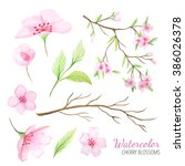 set of hand painted watercolor... | Shutterstock . vector #386026378