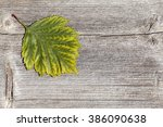 green leaf on a wooden plank.... | Shutterstock . vector #386090638