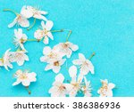 Plum Flowers On A Branch On A...