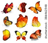 Nine Yellow Orange Butterflies...