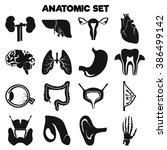 set of sixteen human organs | Shutterstock .eps vector #386499142
