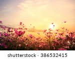 landscape nature background of... | Shutterstock . vector #386532415