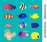 Set Of Sea Fish Color Design...