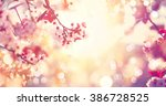 Spring border or background art ...