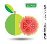 guava  fruit vector illustration | Shutterstock .eps vector #386799526