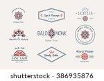 asian health and beauty logo... | Shutterstock .eps vector #386935876