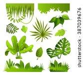 jungle plants. set. vector... | Shutterstock .eps vector #387039676