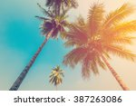 coconut palm tree with vintage...   Shutterstock . vector #387263086