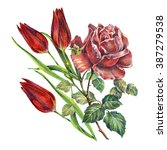 rose and tulips color pencil ... | Shutterstock . vector #387279538