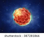 early stage embryo   stem cell... | Shutterstock . vector #387281866