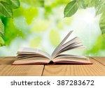 book. | Shutterstock . vector #387283672