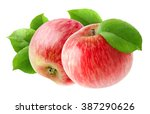 isolated apples. two red apple... | Shutterstock . vector #387290626