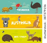 cute animals set  echidna koala ... | Shutterstock .eps vector #387379156