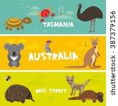 cute animals set  echidna koala ... | Shutterstock .eps vector #387379156