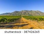 dirt road through rural... | Shutterstock . vector #387426265