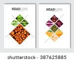business brochure design... | Shutterstock .eps vector #387625885