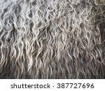 Soft  And Fluffy Sheepskin  ...