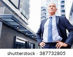 portrait of confident... | Shutterstock . vector #387732805