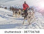 sled dog racing alaskan... | Shutterstock . vector #387736768