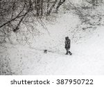 Girl Walking With Dog In Snowy...