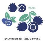 blueberry. icon set. fresh... | Shutterstock .eps vector #387959458