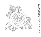 hand drawn lines rose flower... | Shutterstock .eps vector #388006672