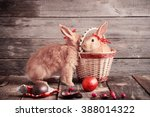 Rabbits With Chocolate Eggs On...