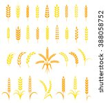 set of simple and stylish wheat ... | Shutterstock .eps vector #388058752