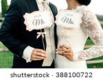 happy newlyweds holding... | Shutterstock . vector #388100722