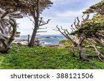 View Of Headland Cove  On A...