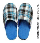 Blue Home Slippers Isolated On...