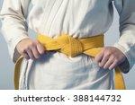hands tightening yellow belt on ...   Shutterstock . vector #388144732