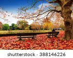 bench in autumn park. autumn... | Shutterstock . vector #388146226