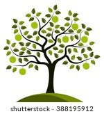 Vector Apple Tree Isolated On...