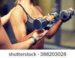 fitness  sport  bodybuilding... | Shutterstock . vector #388203028