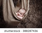 portrait of a beautiful newborn ... | Shutterstock . vector #388287436