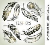 feather sketch set. hand drawn... | Shutterstock .eps vector #388428172