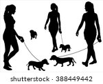 Stock vector girl walking with a dog on a leash silhouette on a white background 388449442