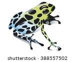poison frog | Shutterstock .eps vector #388557502