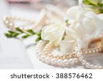 pearl necklace with white... | Shutterstock . vector #388576462