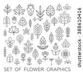 set of geometrical leaves ... | Shutterstock .eps vector #388610416