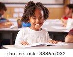portrait of african american... | Shutterstock . vector #388655032