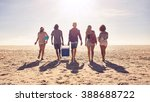 rear view portrait of group of... | Shutterstock . vector #388688722