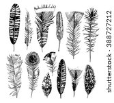 hand drawn feathers collection | Shutterstock .eps vector #388727212