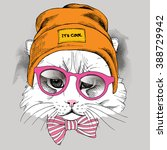 cat portrait in a hipster hat...   Shutterstock .eps vector #388729942