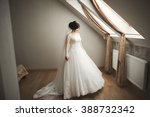 luxury bride in white dress... | Shutterstock . vector #388732342