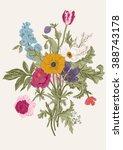 victorian bouquet. spring... | Shutterstock .eps vector #388743178
