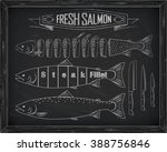 three fresh salmon from the... | Shutterstock .eps vector #388756846