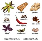 spice sketch color collection. | Shutterstock .eps vector #388802665