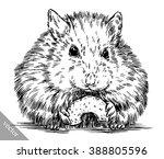 engrave ink draw hamster... | Shutterstock .eps vector #388805596